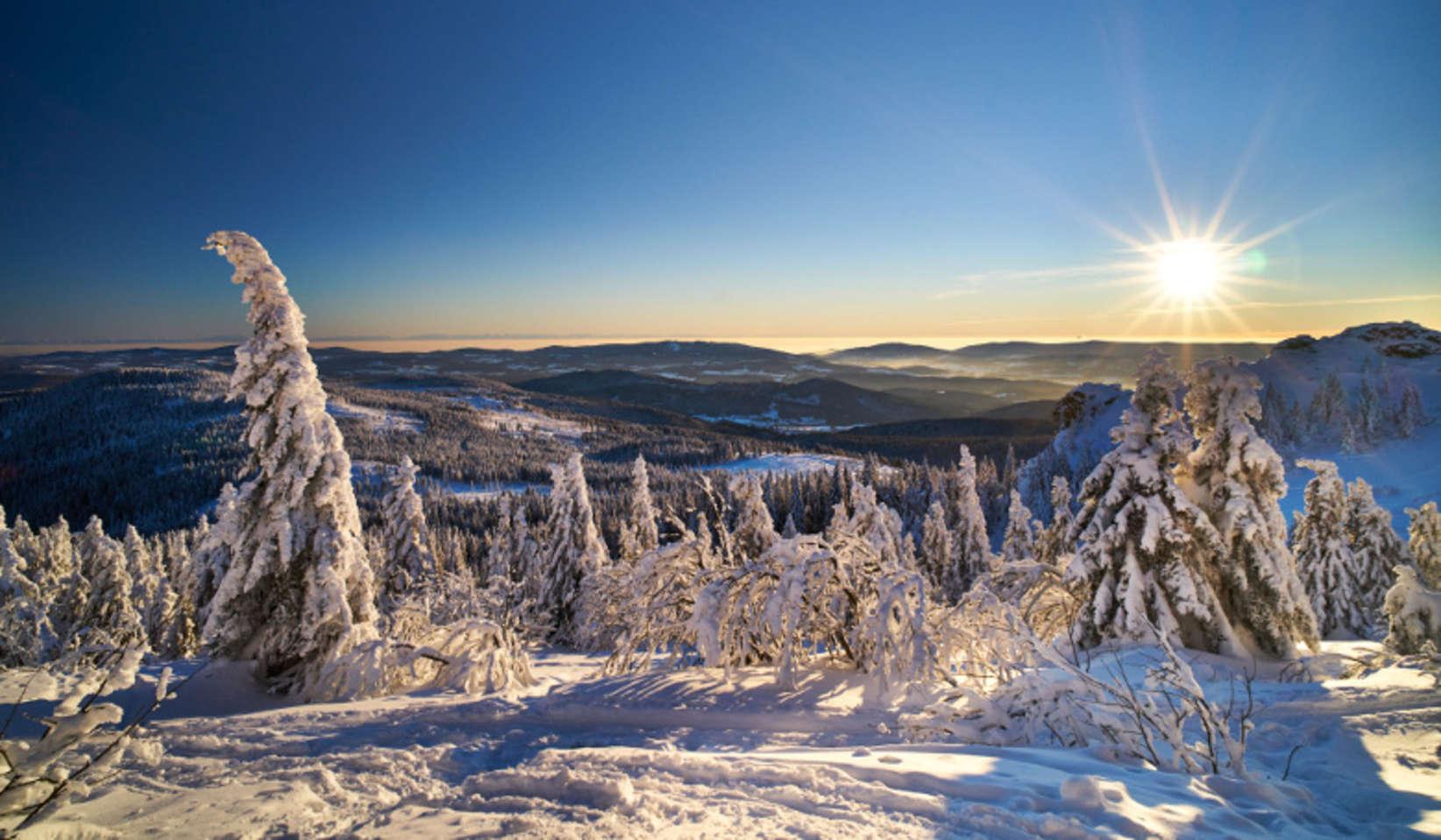 Urlaub Bayerischer Wald Ferien In Bayern Wandern